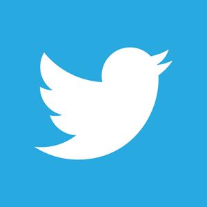 Twitter 2012 negative logo 5c6c1f1521 seeklogo com